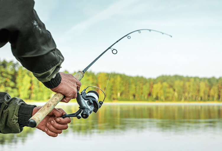 Best Casting Rods in 2021